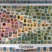 Collage Guyanese flag with stamps